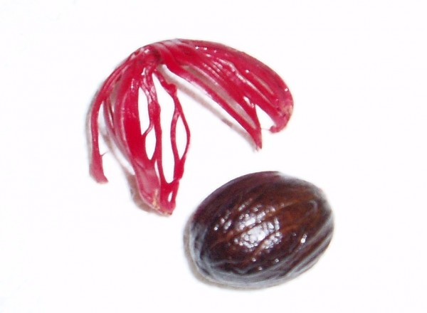 Nutmeg (Brown) and Mace (Red)