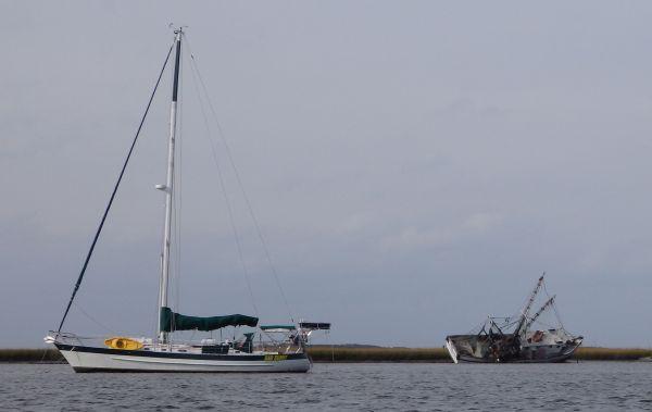 S/Y Bad Bunny and Shrimp Boat
