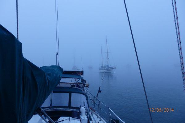 Foggy Morning at the Intracoastal by the Saint Marina Municipal Marina