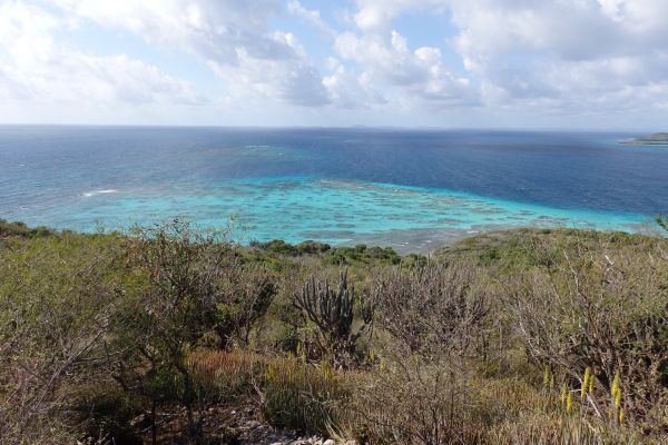 Extensive Coral Reefs Such as the Mile-Long Formations Southeast of Culebrita