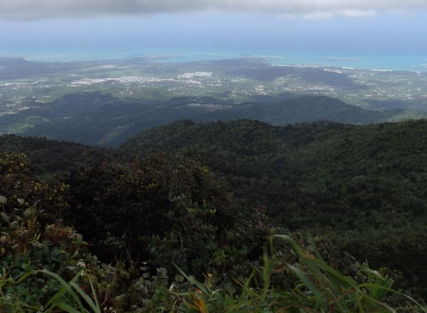 Another View from El Yunque National Forest
