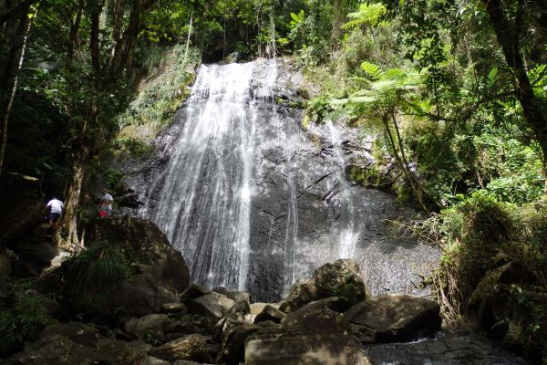 Water Fall in El Yunque Forest