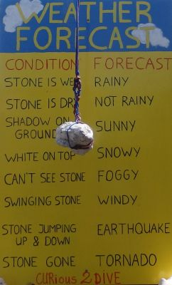Weather Forecast (100% Accurate)