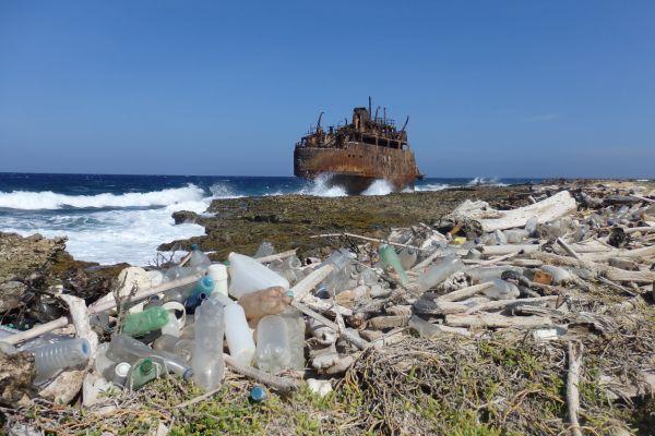 Klein Curacao Island (East Side, Windward Side)
