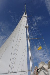'Bad Bunny' Sailing with Jib Pole Only. We didn't remove the quarantine flag which we raised in Cabo de la Vela.