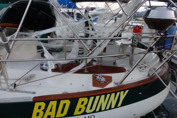 Bad Bunny on Halloween Day 2015