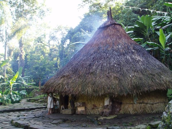 Traditional Tayrona House: Built in wood, mud, palm and vines, Tayrona house had a circular form without divisions inside. Roofs were cone shaped, which according to the indigenous word-of-mouth tradition, represent the Sierra Nevada Mountains. They were inhabited by the members of the same family, who lived around the fire, which provided them with heat and light. It was also used to cook and the smoke worked as an insect repellent.