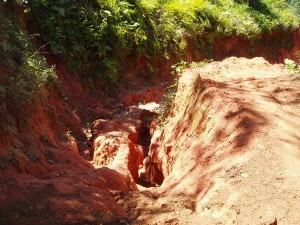 Hiking Trail with Red Clay. We had rain every day afternoon during our stay.