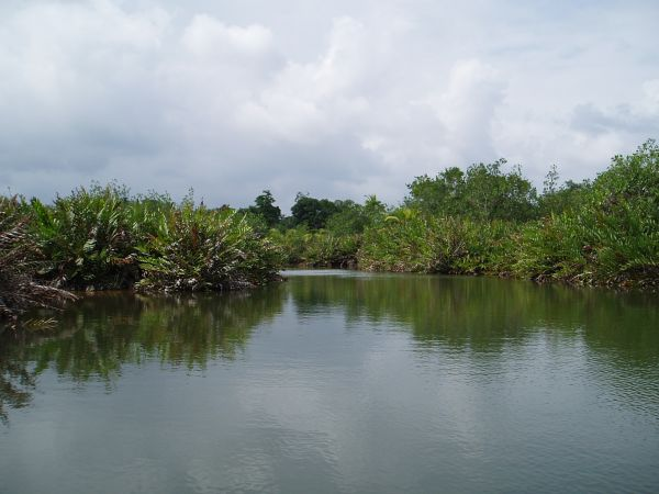 Entrance to Ibedi River by Mulatupu Island, San Blas/Panama