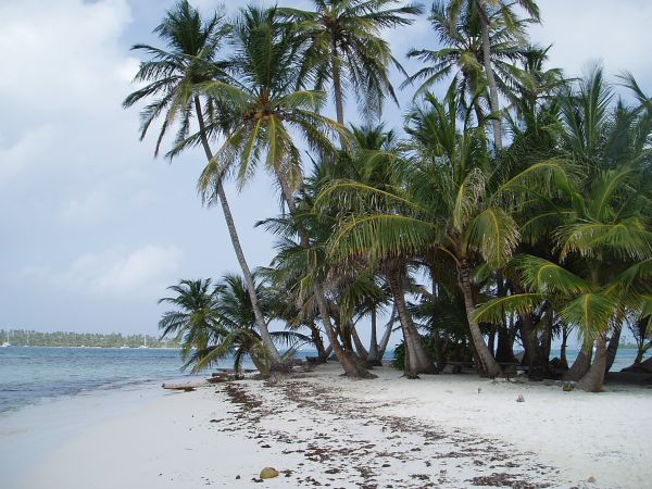 Tiny Island 'Waisaladup' near Green Island