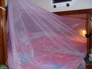 My Cabin Covered with Pink Mosquito Net