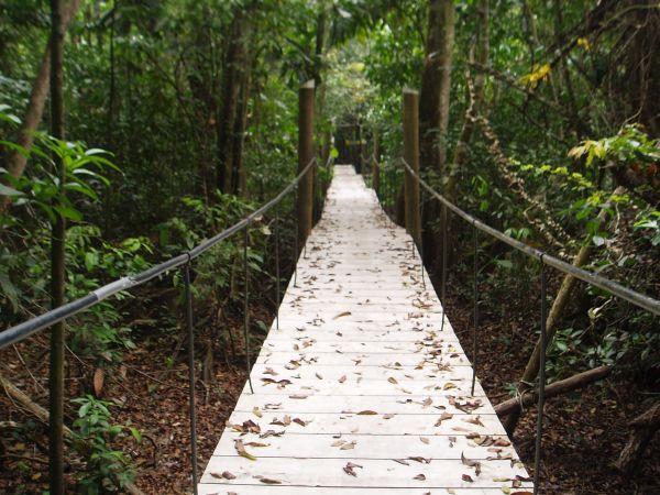 Hiking Trail in Tijax Marina Resort Property