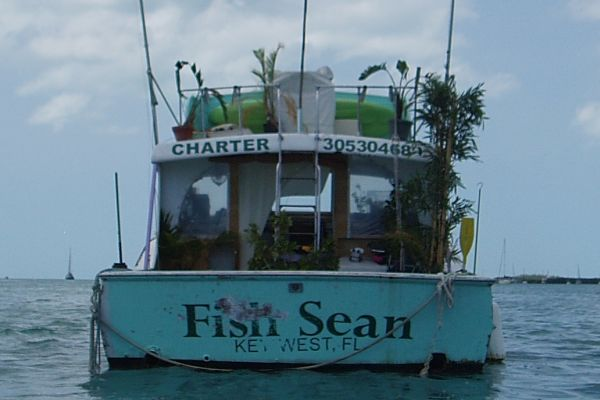 A Fishing Boat with Live Palm Trees at Key West Anchorage