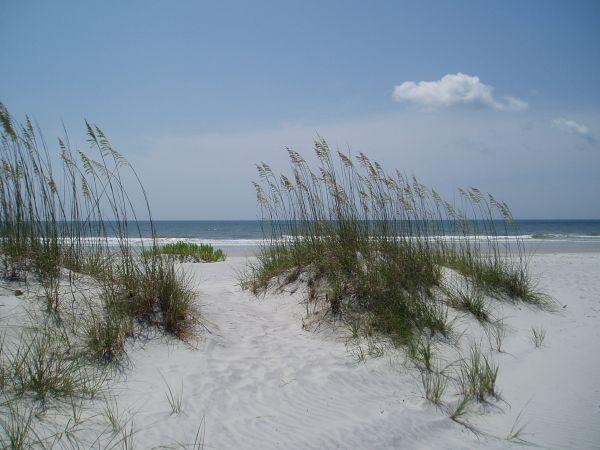 Sand Dunes, Masonboro Island Beach, North Carolina, USA