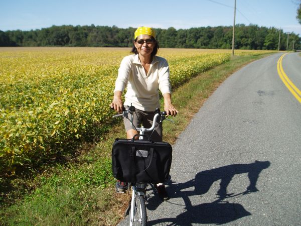 Bike Riding along the Soybean Field, Kinsale, Virginia, USA